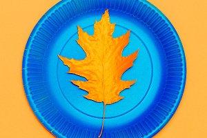 Art gallery. Autumn colored leaf i