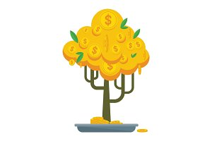 golden money tree bonsay