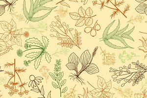 Hand drawn herbs background