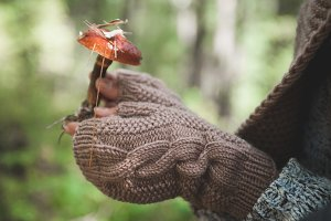 Female hands in mittens hold a forest mushroom