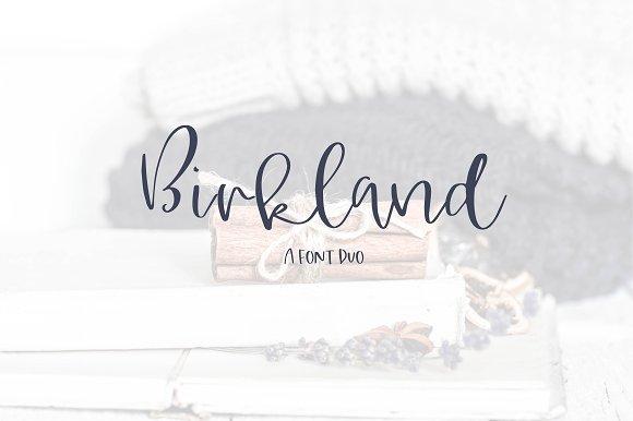 Birkland A Font Duo