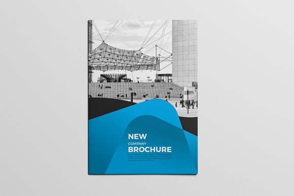 Company Multipurpose Brochure