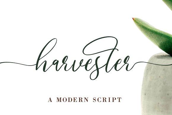 Harvester Modern Script