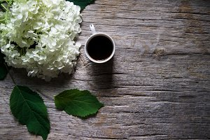 Hydrangea & Coffee On Rustic Wood