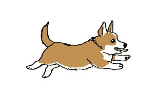 Hand drawn welsh corgi pembroke funny dog on white ink drawn funny dog graphic dog sketches art welsh corgi pembroke smiling dog
