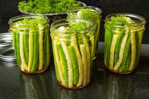 Green and yellow beans pickled