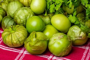 Tomatillos freshly harvested