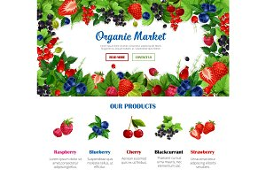 Fruit and berry poster for organic food design