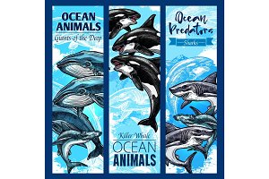 Shark and whale, sea predatory animal banner set