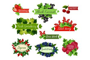 Berry and fruit label set for food, drink design