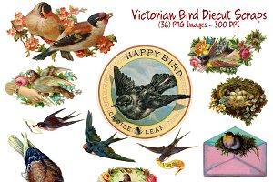 Victorian Diecut 36 Bird Scraps Set