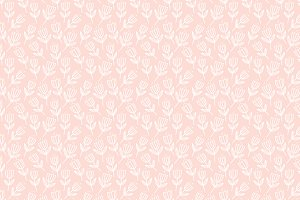 Vector Pattern Blush Pink Floral