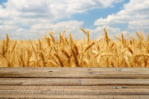 Table with wheat field background