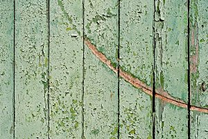 Green Scratched Fence.JPG