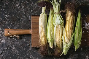 Young raw corn cobs