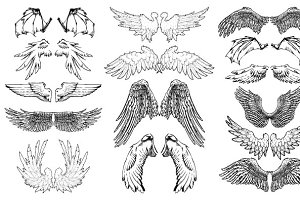 Hand Drawn Wings Vector Pack