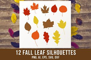 12 Fall Leaves Clipart
