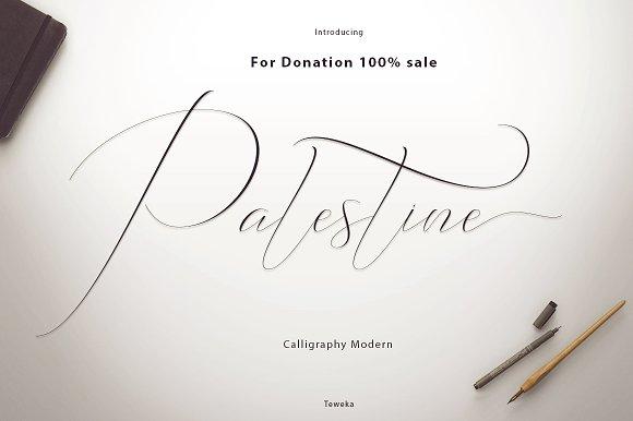 Palestine Donation 100%