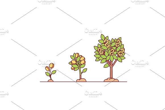 Growing Money Tree