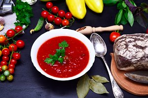 Gazpacho spanish cold soup