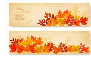 Banners with colorful autumn leaves