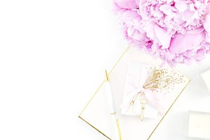 Peony & Gold Chic Desktop Photo 12