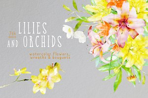 Watercolor Lilies & Orchids