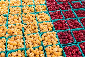 Boxes of red and yellow raspberries
