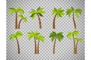 Palm trees set on transparent background
