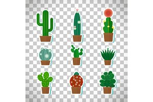 Cactus icons set on transparent background