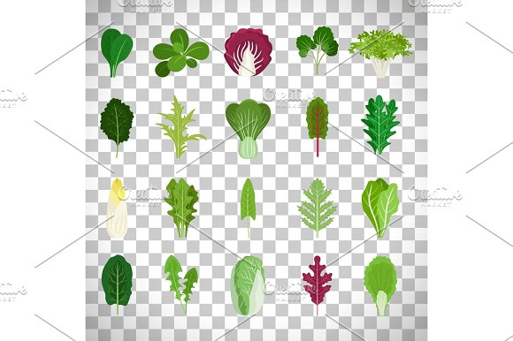 Green Salad Leaves On Transparent Background