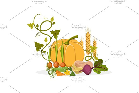 Rich Harvest Of Delicious Vegetables And Plants