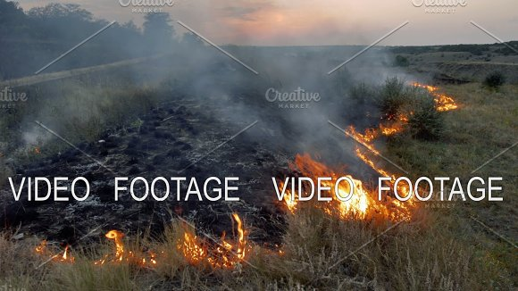 Wildfire Flames And Smoke In Nature