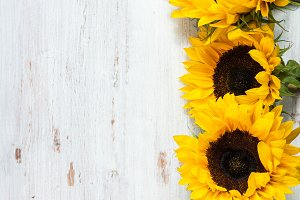 Yellow Sunflower Bouquet On Wooden Rustic Background Nature Photos
