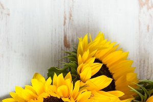 Yellow Sunflower Bouquet On White Rustic Background Nature Photos Creative Market