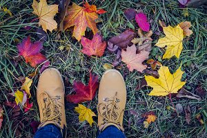 Casual unisex boots with colorful autumn fallen leaves.