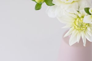 Soft White Flowers - Styled Stock