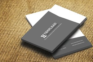 Corporate Business Card SE0237