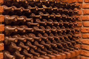 wine bottles in the cellar