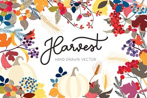 Harvest hand drawn in Fall / Autumn