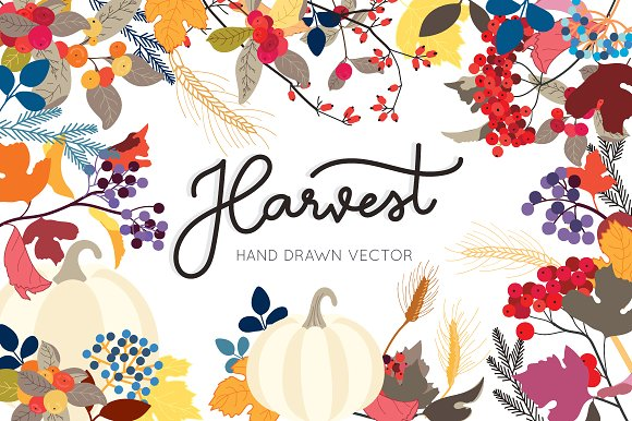 Harvest Hand Drawn Vector Design Set