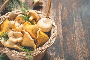Basket with wild mushrooms chanterelles on a dark background