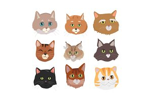 Set of Cat s Faces Vector Flat Design Illustration