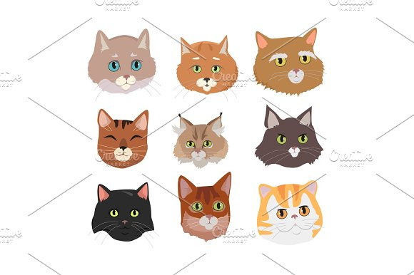 Set Of Cat S Faces Vector Flat Design Illustration