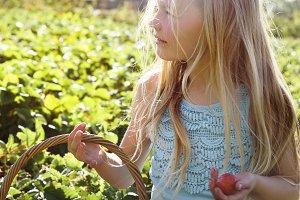 Little girl harvesting