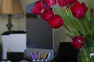 Red Tulips on Desk