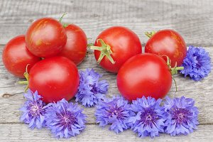 Tomatoes and cornflowers