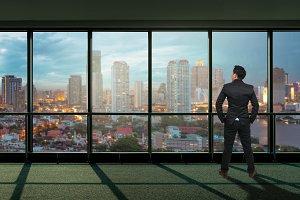 Businessman looking megalopolis