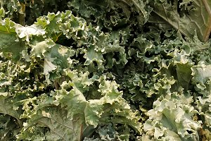 Kale leaves in the fruits market