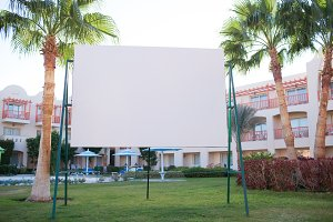 Blank billboard with tropical palm